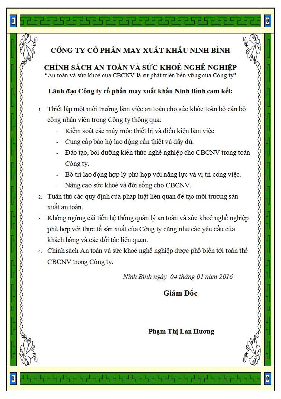 mayninhbinh-chinh-sach-an-toan-suc-khoe-nghe-nghiep